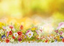 Fundo do outono com a cama de flores da queda e o terraço de madeira Imagem de Stock