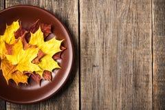 Fundo do outono com folhas de bordo em uma placa Foto de Stock Royalty Free