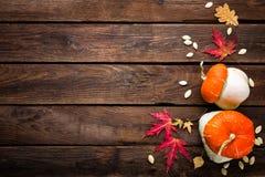Fundo do outono com folhas e abóboras, ação de graças e cartão do Dia das Bruxas Fotografia de Stock Royalty Free