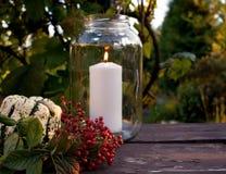 Fundo do outono com folhas e as abóboras coloridas na placa de madeira rústica Ação de graças e conceito dos feriados do Dia das  Imagem de Stock