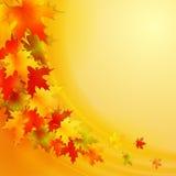 Fundo do outono com folhas Natureza do vetor Imagens de Stock