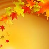 Fundo do outono com folhas Natureza do vetor Imagem de Stock