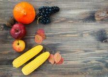 Fundo do outono com frutos Frutos sazonais do dia da ação de graças Halloween Fotografia de Stock Royalty Free