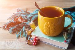 Fundo do outono com o copo do chá, do livro velho e do lenço morno no fundo de madeira Do outono vida ainda Imagens de Stock