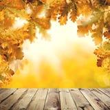 Fundo do outono com placa de madeira vazia, folhas do carvalho amarelo da queda e luz abstrata do bokeh ilustração do vetor