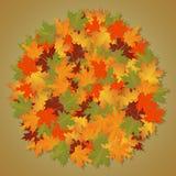 Fundo do outono do bordo redondo das folhas Fotos de Stock Royalty Free