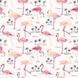 Fundo do pássaro do flamingo Imagens de Stock