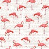 Fundo do pássaro do flamingo Teste padrão sem emenda do vetor Foto de Stock Royalty Free