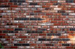 Fundo do papel de parede do contexto da textura do teste padrão da parede de tijolo vermelho Fotos de Stock
