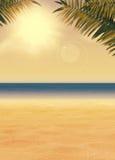 Fundo do paraíso do verão Fotos de Stock Royalty Free
