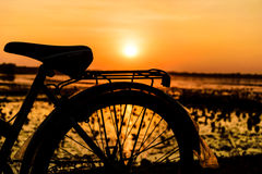 Fundo do por do sol da bicicleta Imagens de Stock