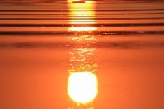 Fundo do por do sol do ouro e de cores vermelhas amarelas e beleza - de África. Imagem de Stock Royalty Free