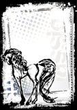 Fundo do poster do cavalo Imagens de Stock