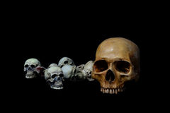 Fundo do preto do crânio de muitas cabeças Foto de Stock