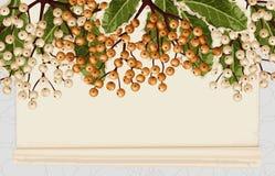 Fundo do quadro do Natal imagens de stock