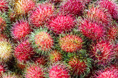 Fundo do Rambutan Foto de Stock