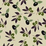 Fundo do ramo de oliveira Foto de Stock Royalty Free