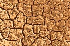 Fundo do solo secado Imagem de Stock