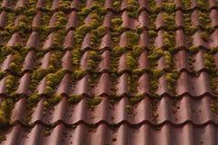 Fundo do telhado de telha vermelha textura coberto de vegetação do telhado imagens de stock royalty free