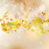 Fundo do tema de Autumn Leaves Vetor do EPS 10 Fotografia de Stock Royalty Free