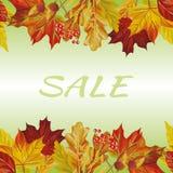 Fundo do texto da venda da beira das folhas de outono imagem de stock royalty free
