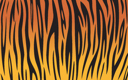 Fundo do tigre Foto de Stock