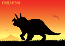 Fundo do Triceratops Fotos de Stock Royalty Free