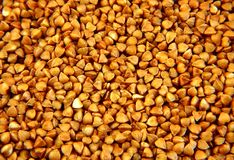 Fundo do trigo mourisco Foto de Stock Royalty Free