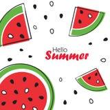 Fundo do verão com fatias de melancia Imagem de Stock