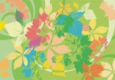 Fundo do verão com folhas Imagem de Stock Royalty Free