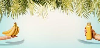 Fundo do verão com folhas de palmeira tropicais, bananas e a garrafa amarela da bebida na mão fêmea no azul pastel imagens de stock