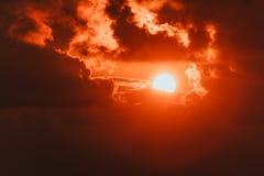Fundo do verão com um estouro magnífico do sol com alargamento da lente Imagens de Stock Royalty Free