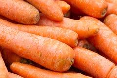 Fundo do vermelho da cenoura Vegetais orgânicos frescos Imagens de Stock Royalty Free