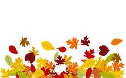 Fundo do vetor com beira colorida das folhas de outono ilustração stock