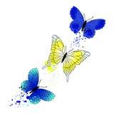 Fundo do vetor com borboletas do voo Imagem de Stock Royalty Free