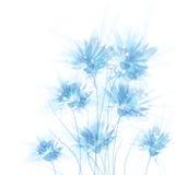 Fundo do vetor com flores Imagem de Stock