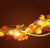 Fundo do vetor com folhas de outono Foto de Stock Royalty Free