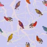 Fundo do vetor com pássaros ilustração stock