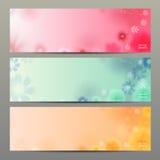Fundo do vetor da flor/molde/bandeira abstratos do folheto Imagens de Stock
