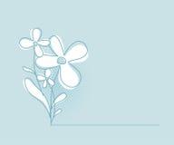 Fundo do vetor da flor Molde erval simples e limpo do projeto de conceito ilustração royalty free
