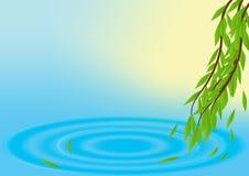 Fundo do vetor da mola com água e as folhas imagens de stock royalty free