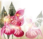 Fundo do vetor do Grunge com as orquídeas cor-de-rosa realísticas Imagem de Stock