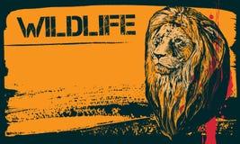 Fundo do vetor do Grunge com cabeça do leão Imagens de Stock Royalty Free
