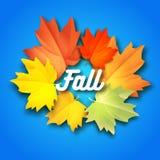 Fundo do vetor do outono com as folhas no fundo com máscaras Quadro das folhas coloridas do outono Fotos de Stock