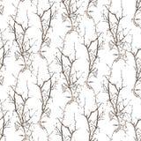 Fundo do vetor dos esboços de ramos de árvores foto de stock royalty free