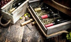 Fundo do vinho Garrafas do vinho vermelho e branco em umas caixas velhas Foto de Stock
