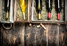 Fundo do vinho Garrafas do vinho vermelho e branco em umas caixas velhas Fotografia de Stock Royalty Free