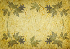 Fundo do vintage com frame floral Imagem de Stock
