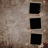 Fundo do vintage com frames e flores Fotos de Stock
