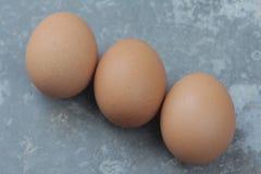Fundo do vintage de três ovos da galinha Fotos de Stock